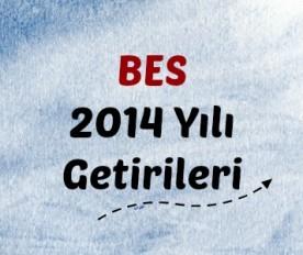 BES 2014 getirileri